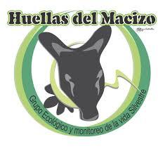 tapir-huellas